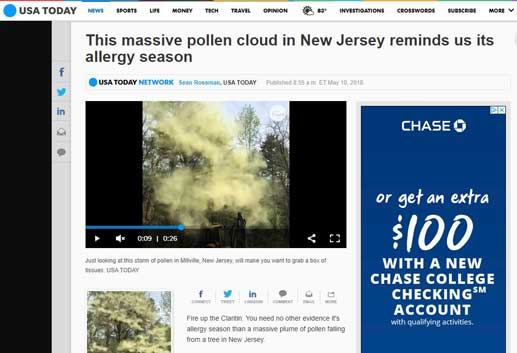 USA Today news article about tree pollen.
